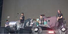 Kensington Concert, Concerts