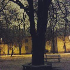 Mierová kolónia v Bratislava, Bratislavský kraj