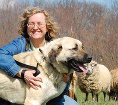 Welcome Jan Dohner author of Livestock Guardians (predators forum at permies)