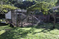 Some of the volunteers at the Wildlife Rehabilitation centre in South Africa getting stuck into the task of dismantling the old Baby Baboon Nursery enclosure in order to make way for a bigger and better version!