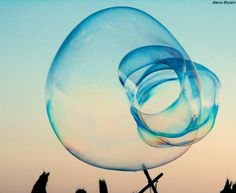 Alexis Shyam - Travel into the bubbles