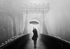 A monochrome end of fall by Felicia Simion