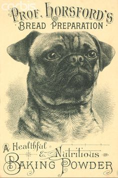Even graphic designers in the 1800s had to put up with stupid client requests. Time I had to include my client's dog in their non-dog-related website: 2.