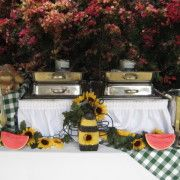 Country/Western Themed Buffet Decor