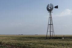 472 Farm attacks, 49 farm murders in South Africa – January to December 2019 New Africa, South Africa, January To December, Elderly Man, Violent Crime, Rome, Scene, Afrikaans, 12 Days