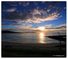 Dee Why Beach, Sydney