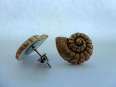 Ammonite Shell Stud Earrings Under the Sea Sea by CraftsbyBrittany, $3.75