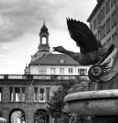 Stadtansichten Dresden 6 von hansi001
