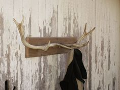 Deer antler coat or hat rack. I could possibly do this with some of D's deer antler's sitting around. Diy Hat Rack, Hat Racks, Elk Horns, Rustic Coat Hooks, Coat Hooks Wall Mounted, Wood Plank Walls, Storage Design, Deer Antlers, Home Decor Furniture
