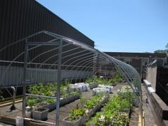 Hoop roof goes on when the temps go down.  Bin planter system makes rearrangement and removal easy.