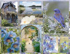The blues love for nature and design