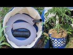 1000 Images About Hydroponics On Pinterest Hydroponic