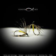 Partridge and Yellow – Moscatzetze.com