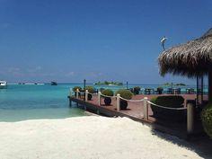 #hudhuranfushi #maldives #beach #sunset #paradise #travel #surf #island #surftrip #nofilter #adaaran #ocean #sun #h https://t.co/IZOYSQzCb1 (via Twitter http://twitter.com/maldivesinpics/status/677475845867458560) - http://ift.tt/1HQJd81