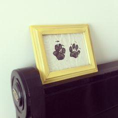 Framed dog paw prints. <3