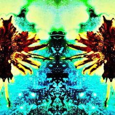 "@naturetrip's photo: ""#artstudio #edit #editfever #glitchmobinspired #instanature #mirrorgram #nature #naturelovers #natureful #natureonly  #naturetrip #scenery  #snapseed #trippy #unitedbyedit"""
