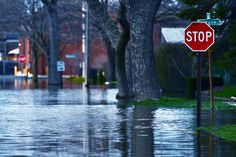 Do you live in a flood-prone area? Know what your insurance covers! Hint: most homeowners insurance does not cover flood damage!