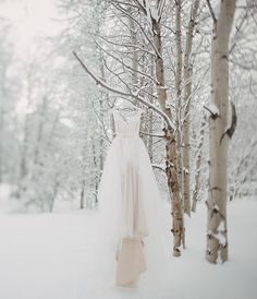 Rustic Tamarack Winter Wedding Rustic Tamarack Winter Wedding Winter wedding dress in the snow Rustic Tamarack Winter Wedding Winter wedding dress in the snow Wedding Robe, Elope Wedding, Dream Wedding, Wedding Dresses, Bridal Gowns, Wedding Navy, Winter Wedding Colors, Winter Bride, Winter Wedding Inspiration