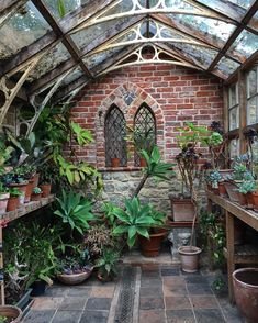 The succulents conservatory. The succulents conservatory. Indoor Garden, Outdoor Gardens, Indoor Outdoor, Outdoor Sheds, Outdoor Plants, Orangerie Extension, Dream Garden, Home And Garden, Outdoor Spaces