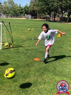 World Cup Soccer Camps And Soccer Clinics Providing soccer training in the San Francisco, Santa Clare, Santa Cruz, Gilroy, Monterey and Salinas areas. Soccer Camps, Soccer Trainer, Spring Break, Summer, View Video, Best Player, Goalkeeper, Role Models, World Cup
