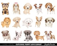 Our Dog Clipart Puppy Clipart set comes with 15 PNG files with transparent backgrounds, and 1 Adobe Illustrator vector file (.EPS file) . These