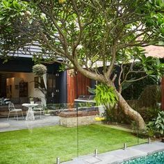 Opting for low-maintenance sub-tropical plantings to match Lucy and Dave's b Bungalow Landscaping, Landscaping Las Vegas, Terraced Landscaping, Landscaping Company, Landscaping Ideas, Tropical Garden Design, Garden Landscape Design, Backyard Pool Designs, Small Backyard Pools