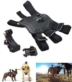 Dog Sport Pulling Harnesses Chest Fetch Strap Belt Mount ... https://www.amazon.ca/dp/B01L3FNXHM/ref=cm_sw_r_pi_dp_x_Pal.xb57DY1F3