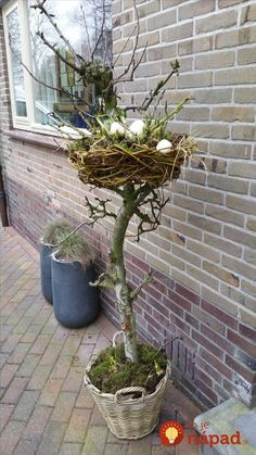 Easter decoration on the porch . Is that too crazy ? I can not say it - Aurele Garegnani - Easter decoration on the porch … Is that too crazy ? I can not say it – Aurele Garegnani - Garden Crafts, Garden Art, Container Plants, Container Gardening, Plant Design, Garden Design, Deco Floral, Easter Holidays, Easter Wreaths