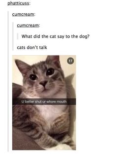 """The one of the cat not talking....the post wasn't too funny, but the tumblr name of """"cumcream"""". That's priceless. Total class, that one."""
