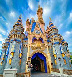 Your Guide to Walt Disney World's 50th Anniversary Celebration! | the disney food blog