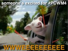 Maxwell is excited for #PCWM4!