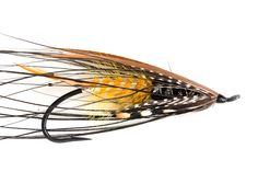 Akroyd famous Dee salmon fly from FlyTyingArchive.com fly tying blog. #flytying #flyfishing