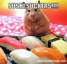 HAMSTERS LOVE SUSHI
