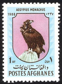 Cinereous Vulture stamps - mainly images - gallery format