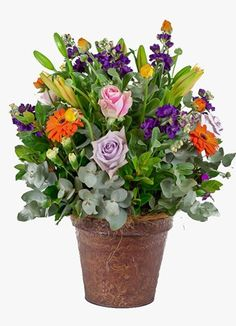 Gauteng Flower & Gift Delivery for all occasions. Whether you are looking for luxury or budget, our flower shops have what you are looking for. Sympathy Flowers, South Africa, Flower Arrangements, Floral Wreath, Wreaths, Gift Delivery, Country, Classic, Pretty
