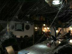 Halloween al Prodige! Brividi!!!