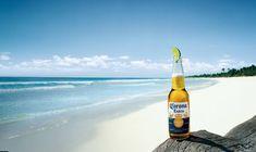 flaglerlive.com wp-content uploads corona-beer.jpg