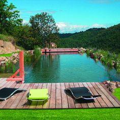 La piscine écologique Woodéo d'Aquatiss Swimming Pool Pond, Natural Swimming Ponds, Natural Pond, Ponds Backyard, Garden Pool, Casas Containers, Lake Cabins, Cool Pools, Pool Landscaping