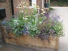 Garden Design Plans, Garden Landscape Design, Big Garden, Summer Garden, Stipa, Rooftop Garden, Minimalist Garden, Gras, Garden Cottage