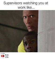 You At Work, Work Humor, Life, Work Memes