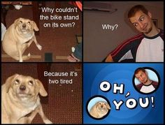 funny dogs, dog, funny pictures, funny photos, meme, Best of Oh, You! Dog Meme