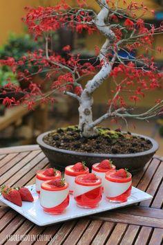 SABOREANDO EN COLORES: Panna Cotta con fresas