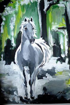 Majika / Kôň