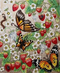 Summer #tidevarv #hannakarlzon #coloring #coloringbook #adultcoloringbook #adultcoloring #pencils #fabercastell #polychromos #prismacolor #prismacolorpremier #drawing #strawberry #butterfly