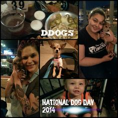 National Dog Day 2014, Part 2 After dropping off a foiled surprise for my friend Sammy we headed downtown for DDogs. The waitresses went beyond the call of duty. Started out bringing a bowl of water for Rogue DeHaro and Pixie DeHaro. They stayed to talk and pet the pups which is of course a plus in my book. Even played with Leonidas. Ordered a chicken breast for the pups. Didn't come with the order. Not mad but thinking its not my night. Ha. Ha. Girl comes back and says they're making it…