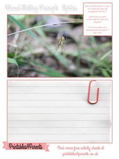 Here's a free printable Spider writing prompt sheet for your children, featuring original Printables4Parents photography.