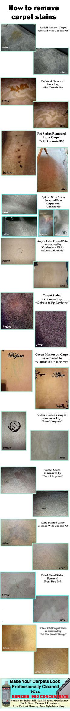 Looking for the best carpet stain remover? Genesis 950 is a green all purpose cleaner that can remove the toughest stains. Here are some examples of stains removed with Genesis 950. Pet stains, coffee stains, wine stains, marker stains, paint stains and more.