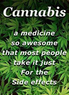 Cannabis!