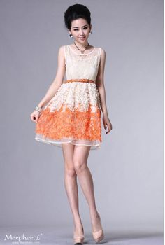 b666c47391 70 Best Creamsicle images