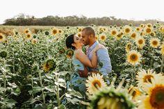 KAREN E DANILO Ensaio de casal em Holambra Couple Photos, Couples, Field Of Sunflowers, Photoshoot, Wedding Photography, Beautiful Landscapes, Married Couple Photos, Field Of Flowers, Couple Shots